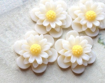 19 mm White Colour Daisy Chrysanthemum Resin Flower Cabochons (.as)