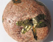 Dragonfly Painted Rock Art, Symbolism, Stress Relief, Natural Remedies