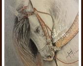 original, drawing, horse, pastel, technique, dibujo, caballo, gift, present