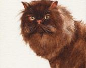 Original Oil CAT Portrait Painting Art Artwork PERSIAN Kitten Artist Signed