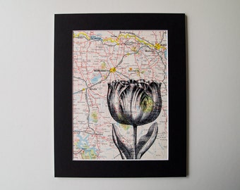 Tulip Print Mounted on a Vintage Map of Victoria, Australia - Ready to Frame