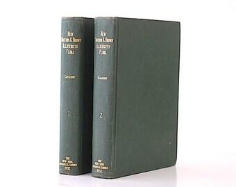 Antique Hardcover Garden Books, New Britton & Brown Illustrated Flora, Gift For MOM, Gardner Books, Book Bundle, Home Decor