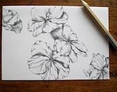 Flower Card Fine Art Print Post Cards Note Cards Blank Botanical Illustration Floral Postcards Stationary Art Prints 4x6