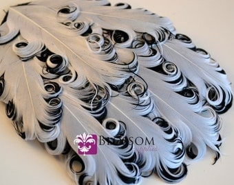 1 Curly Nagorie Feather Pads - Goose Feather Pad - White on Black - DIY Headband Hair clip Hat Newborn Photo Prop - Wedding Supplies