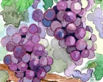ACEO Limited Edition 4/25 - July grapes