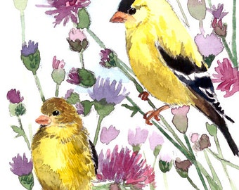 ACEO Limited Edition 8/25- Goldfinches in thistle field, Art print of an original watercolor painting, Bird art, Housewarming gift idea