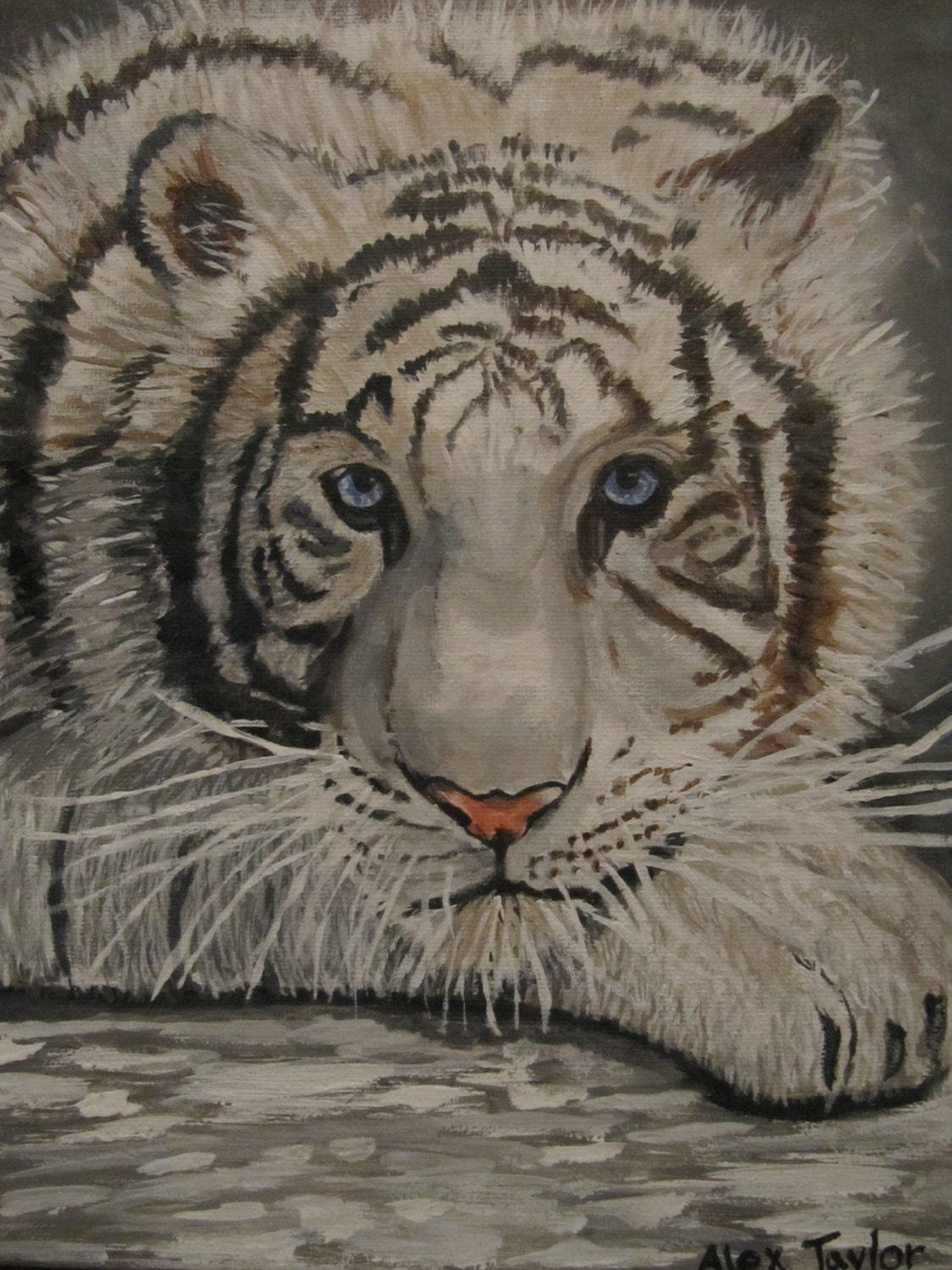 An original acrylic painting of a white Siberian tiger