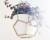 Hex Brass and Ceramic hanging Pot