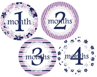Baby Month Stickers Baby Monthly Stickers Baby Shower Gift