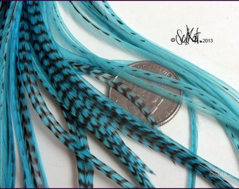 Aqua Hair Feathers 10 Turquoise Feather Extensions Long Bird Feathers / Hair Accessory