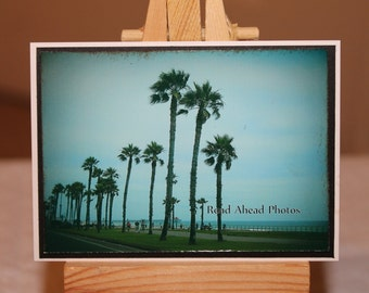 ACEO, ATC, Artist Trading Card, photograph, Palm Trees, beach
