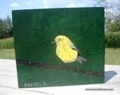 The Juror Male Pine Warbler is an acrylic on wood original painting by artist Rachel Dickson