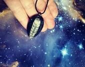 Ammonoidea necklace