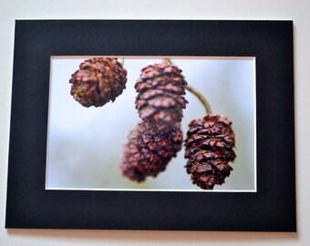 """Mounted Original Photograph - 8 x 6"""" - Winter Stillness"""