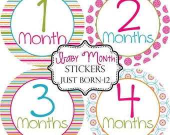 Girls Preppy Stripe Floral, Monthly Baby Stickers Make Great Baby Shower Gifts..Bonus Just Born Sticker Included