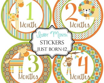 Boys Blue Zoo Animals Monthly Baby Stickers Make Great Baby Shower Gifts..Bonus Just Born Sticker Included