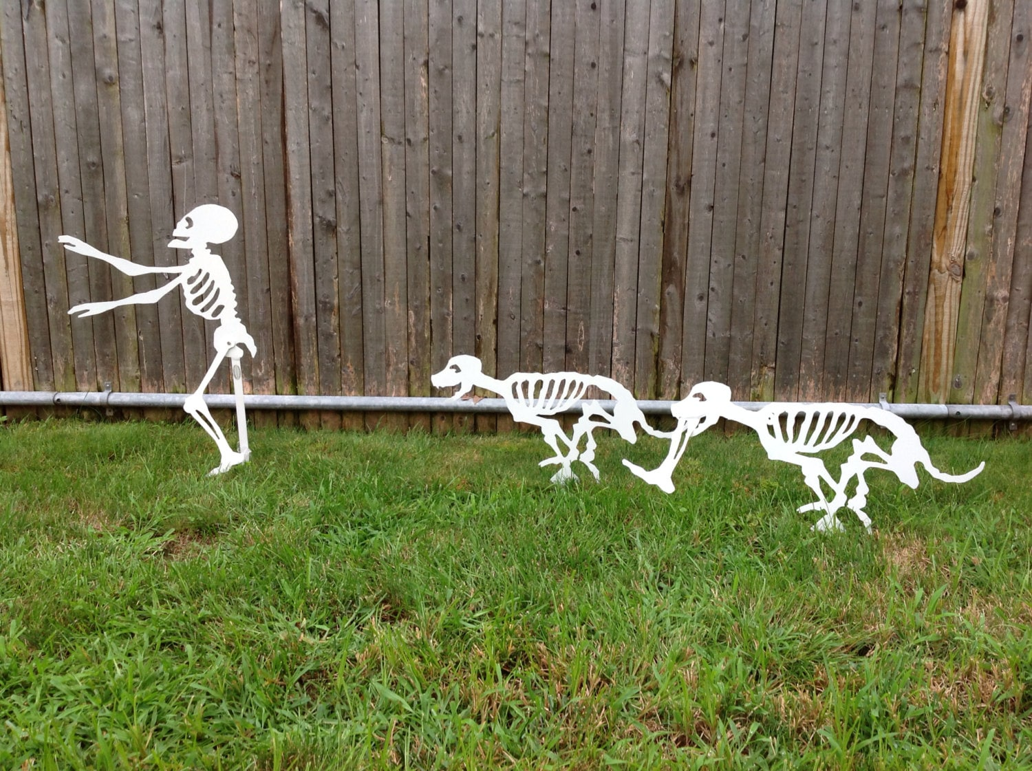 halloween running yard skeletons dog skeletons by metalarchitect