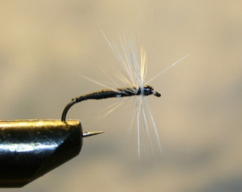 Fishing - Fly - Lure - Fly Fishing - Black Thread Spider - White Hackle - Number 10 Hook - Michigan - Trout