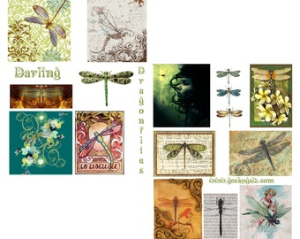 Darling Dragonflies Digital Collage Set
