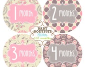 Baby Month Milestone Stickers, Monthly Sticker, Bodysuit Stickers, Baby Monthly Stickers, Baby Shower Gift, Baby Girl - Shabby Blooms