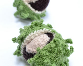 Knitted Conker and Shell