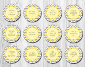 INSTANT DOWNLOAD - Cupcake Toppers - You Are My Sunshine Theme - DIY - Printable
