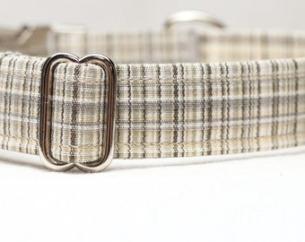 Male Dog Collar Plaid for Fall or Autumn