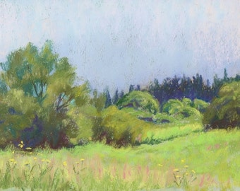 "Original Pastel Landscape Painting - ""Summer Splendor"" by Colette Savage Rochester NY lush summer green country scene meadow wildflowers art"
