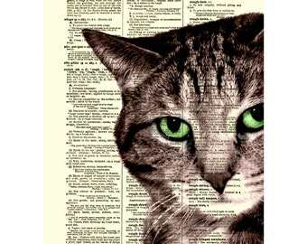 Sly Cat Printed on Antique 1800s Dictionary Page, Home Decor, Wall Art Dictionary Art Print, Tabby Cat Art