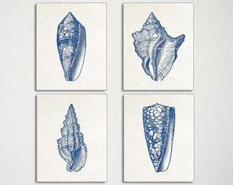 Seashell Art, Blue Seashell Prints, Antique Seashell Illustrations, Seashells, Seashell Print Set, Blue White