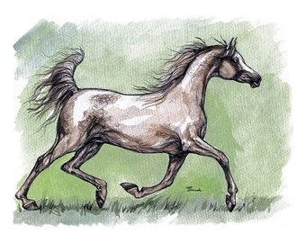 Grey arabian mare running original ink and watercolor painting