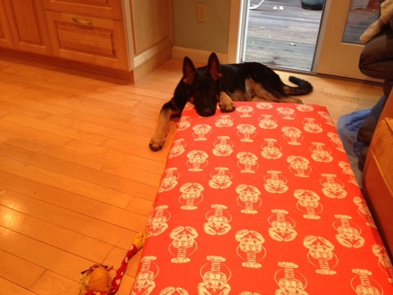 Dog Bed Cover Salmon Nautical Lobster Print