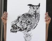 Owl (Screenprint)