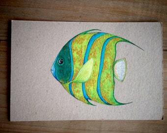 Angelfish Drawing