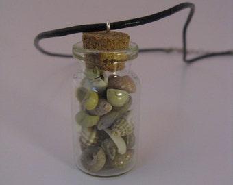 Miniature Terrarium Necklace with Black Leather Cord