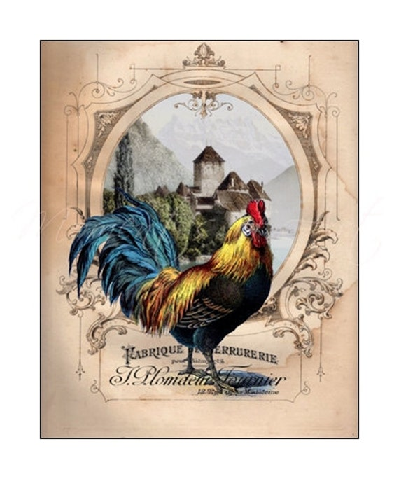 French Chateau Rooster I Rooster Art Print 8x10 By