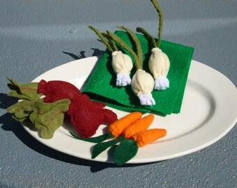 Felt Onions Felt Carrots Felt Beets Root Vegetable Set