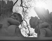 Black and White Photo of a Tale of Two Cherubs in the Sunshine - a Tree Branch In-Between - Photography Fine Art - Instant download