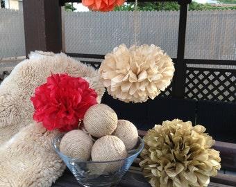 Set of 15 tissue paper flowers pom poms-birthday pom pom-nursery pom poms-party poms-wedding poms-home decor-hanging pom poms