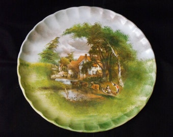 Wonderful vintage hand painted porcelain plate