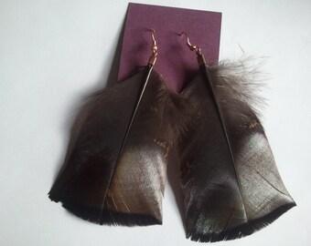Rio Grande Turkey feather earrings