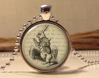 Alice in wonderland Jewelry. Alice Necklace .Alice in wonder land art pendant jewelry(alice #13)