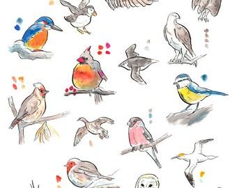 Great British Birds Print