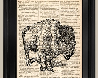 "Lone Buffalo. Vintage book page art print. Animal Print on book page. Fits 8""x10"" frame."