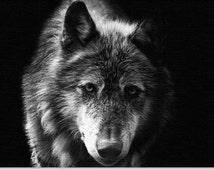 Wolf - Canvas Art - Art Print - Black and White - Print - Wall Art