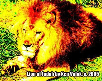 "Volok ""Lion of Judah"" (2005) Limited Edition of 100 Photograph"