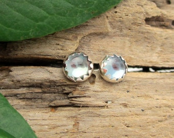 Montana Sapphire Earrings in Sterling Silver - Stud Earrings with Genuine Gemstones - Free Gift Wrapping