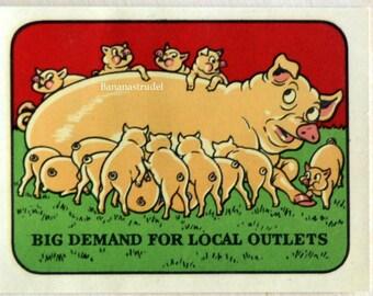Vintage Retro Water Slide Decal / Transfer. Big Demand for Local Outlets / Pork / Pig / Bacon