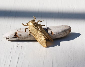 Cicada BROOCH Insect Pin Golden Brass Insect Summer Beetle Tie Pin Lapel Pin Tie Tack