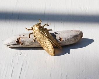 Cicada Brooch, Gold Bug Tie Tack, Gold Beetle Pin, Insect Brooch, Brass Insect, Summer Beetle, Bug Tie Pin, Cicada Lapel Pin, Gold Tie Tack